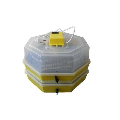 Keltetőgép (emeletes) hőmérséklet- és párakijelzővel, kézi forgatóművel, C5-2x5-FHP