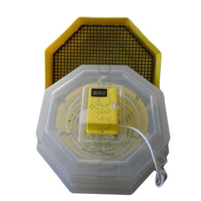 Keltetőgép hőmérséklet-kijelzővel C5-H